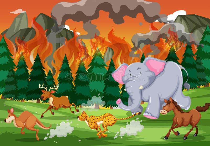 Gli animali selvatici funzionano a partire dall'incendio violento illustrazione di stock