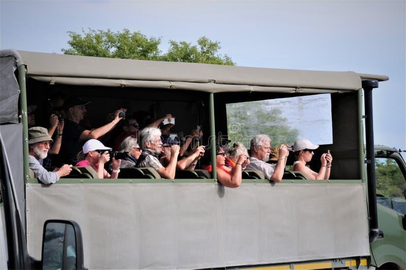 Gli animali stanno esaminando i turisti nel Sudafrica fotografia stock libera da diritti