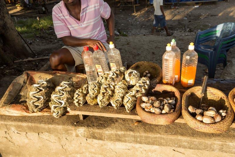 Gli inferni per alimento al mercato dal mare, Madagascar fotografia stock libera da diritti