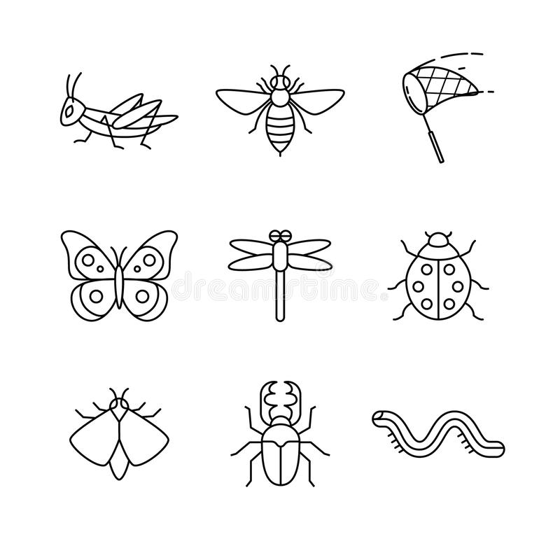 Gli insetti assottigliano la linea icone di arte messe illustrazione vettoriale