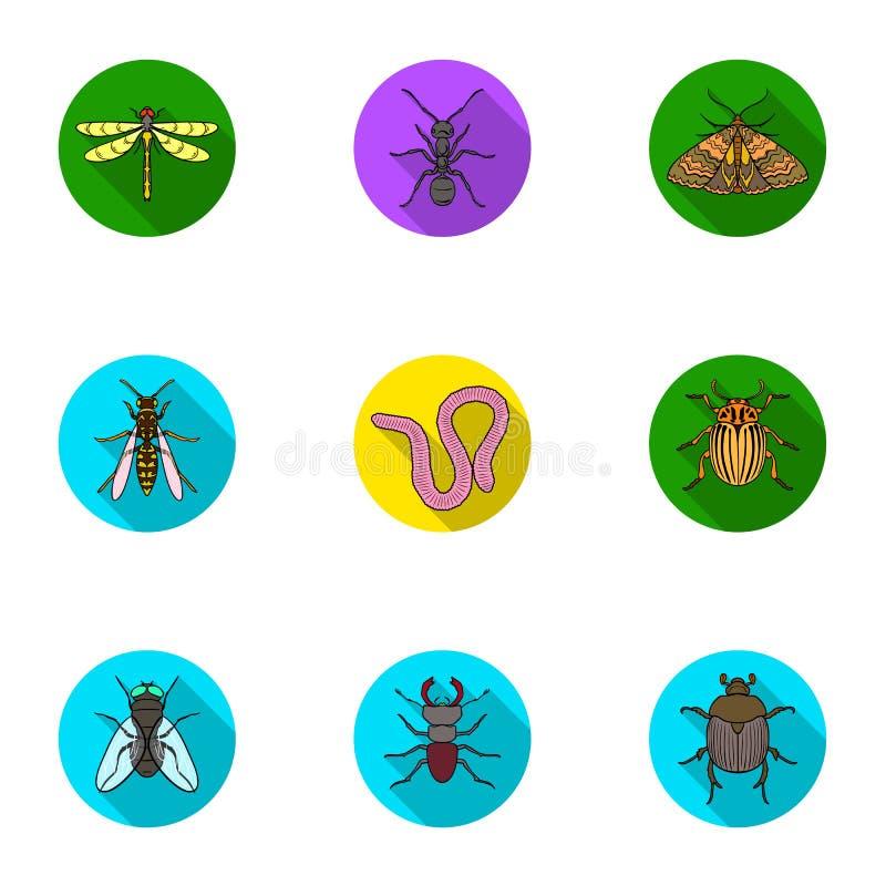 Gli insetti hanno messo le icone nello stile piano Grande raccolta dell'illustrazione delle azione di simbolo di vettore di inset illustrazione di stock