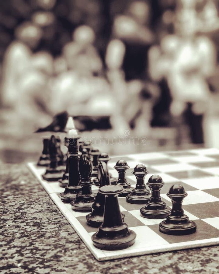 Gli insiemi di scacchi si siede nel parco ed aspetta una nuova partita fotografia stock
