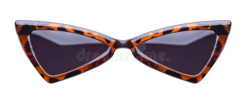 Gli occhiali da sole indicati del leopardo fronteggiano fotografia stock