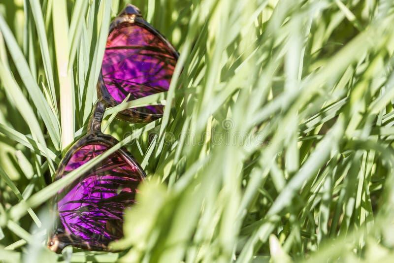 Gli occhiali da sole si trovano in erba verde, nelle lenti di cui il cielo immagini stock libere da diritti