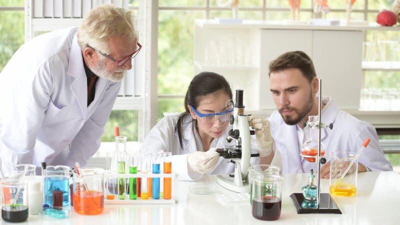 Gli scienziati stanno lavorando nei laboratori di scienza immagine stock libera da diritti