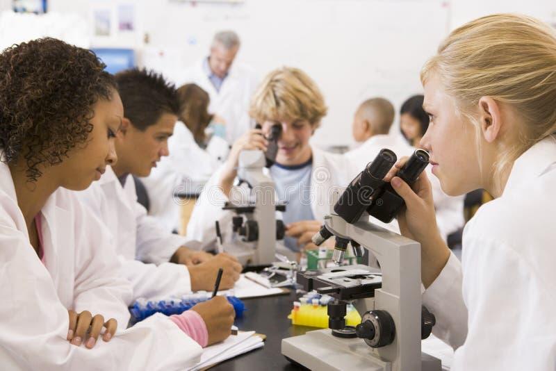 Gli scolari ed il loro insegnante nella scienza classificano fotografia stock libera da diritti