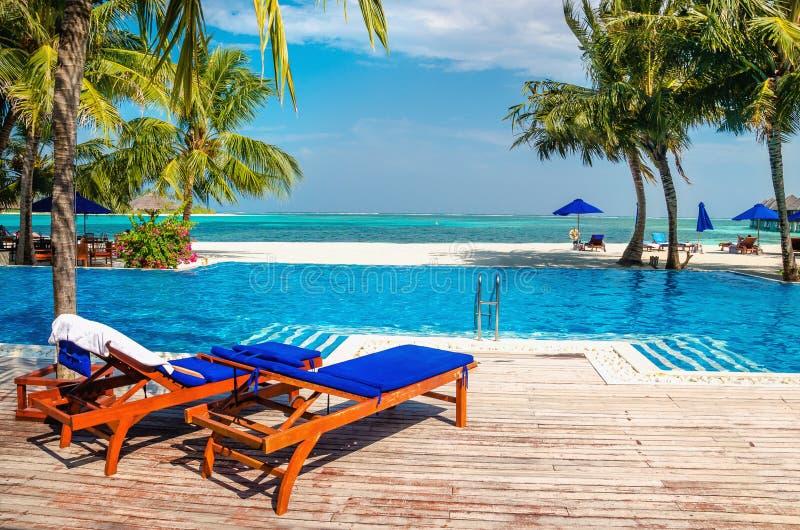 Gli sdrai di legno dallo stagno sui precedenti dell'oceano azzurrato innaffiano, le Maldive immagine stock libera da diritti