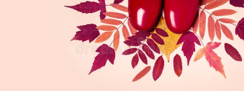 Gli stivali di gomma di autunno femminile di modo ed asciugano le foglie sul fondo di colore pastello immagine stock libera da diritti