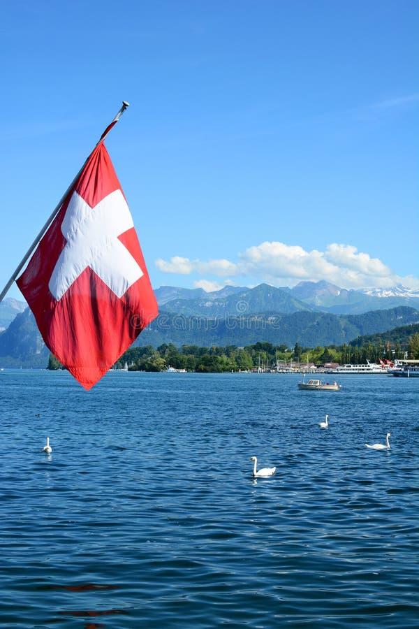 Gli svizzeri diminuiscono sopra il lago Lucerna fotografie stock libere da diritti
