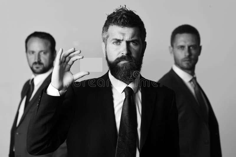 Gli uomini d'affari indossano i vestiti ed i legami astuti Gli uomini con la barba ed i fronti seri annunciano la società e l'ass immagine stock libera da diritti