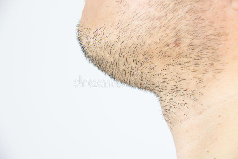 Gli uomini mettono la barba in cortocircuito fotografia stock libera da diritti