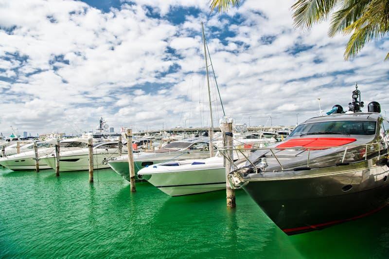 Gli yacht di lusso si sono messi in bacino nel porto di Miami immagine stock libera da diritti