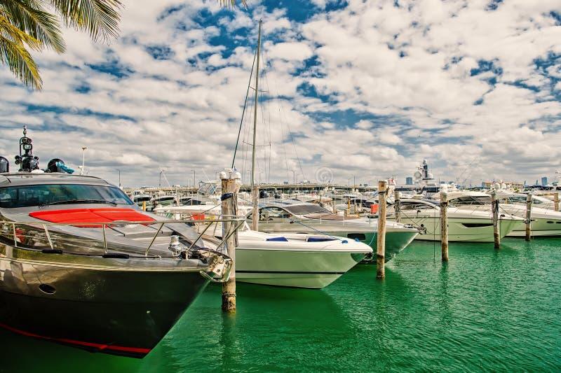 Gli yacht di lusso si sono messi in bacino nel porto di Miami immagine stock