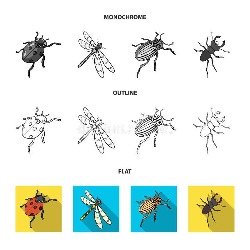 Gliederfüßer-Insektenmarienkäfer, Libelle, Käfer, Kartoffelkäfer Insekten stellte Sammlungsikonen in der Ebene, der Entwurf ein,  lizenzfreie abbildung