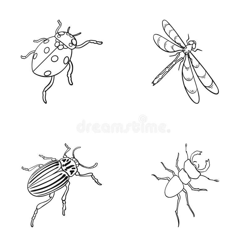 Gliederfüßer-Insektenmarienkäfer, Libelle, Käfer, Kartoffelkäfer Insekten stellte Sammlungsikonen im Entwurfsartvektor ein lizenzfreie abbildung