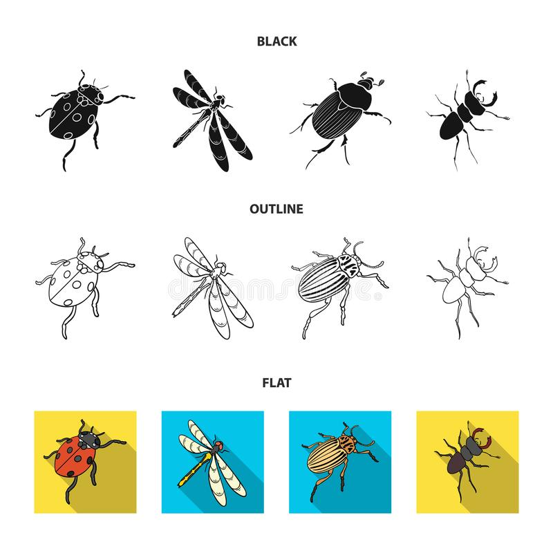 Gliederfüßer-Insektenmarienkäfer, Libelle, Käfer, Kartoffelkäfer Insekten stellte Sammlungsikonen im Karikaturartvektor ein vektor abbildung