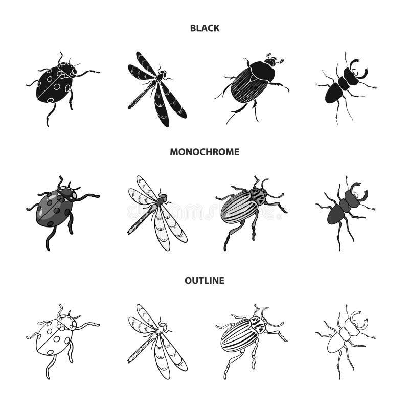 Gliederfüßer-Insektenmarienkäfer, Libelle, Käfer, Kartoffelkäfer Insekten stellte Sammlungsikonen in Schwarzem ein, einfarbig, En vektor abbildung