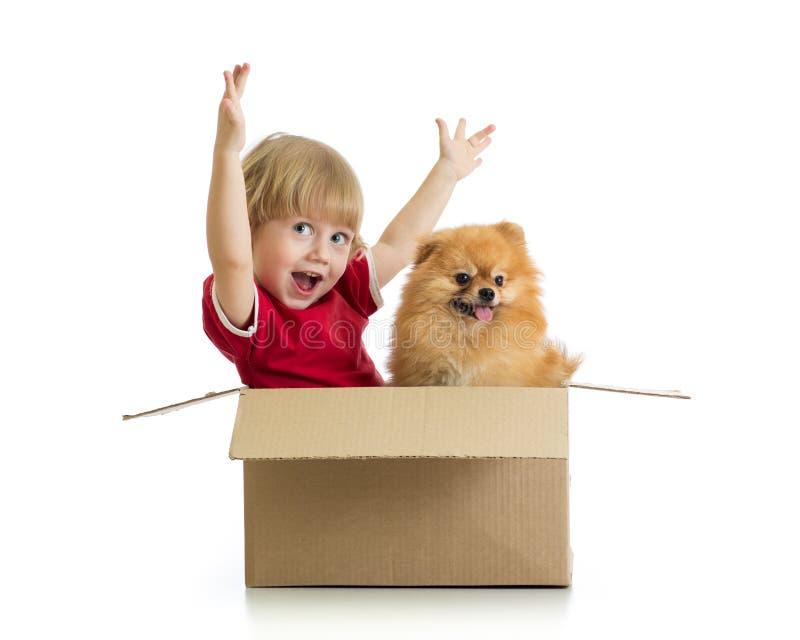 Glimlachend die kind met handen omhoog en hond in cardbox op witte achtergrond wordt geïsoleerd stock afbeeldingen