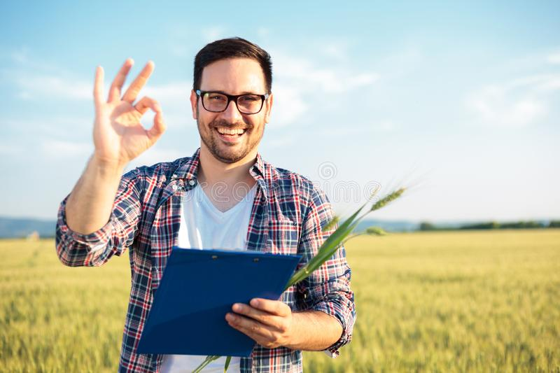 Glimlachend jong agronoom of landbouwers het inspecteren tarwegebied vóór de oogst die direct camera bekijken, die O.K. teken ton stock fotografie