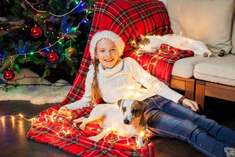 Glimlachend meisje met huisdieren dichtbij Kerstmisboom thuis stock foto