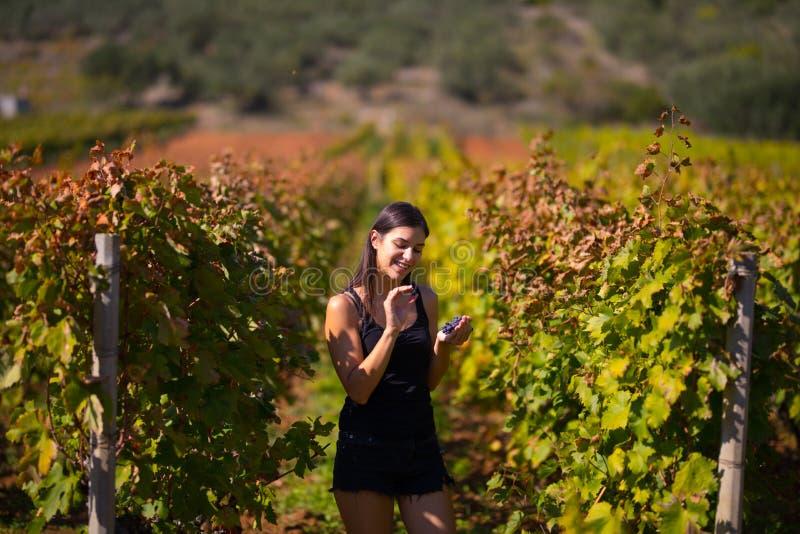 Glimlachende elegante vrouw in aard Vreugde en geluk Rustige vrouwelijk op het gebied van de wijndruif in zonsondergang Wijnbouwg royalty-vrije stock afbeelding