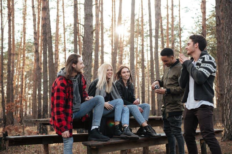 Glimlachende groep vrienden die in openlucht in het bos zitten stock afbeeldingen