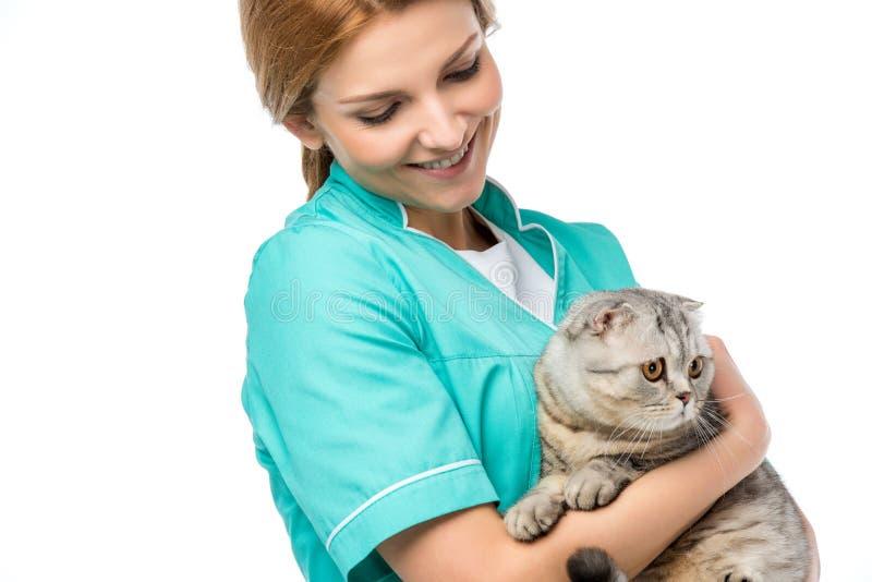 glimlachende jonge veterinaire holdings aanbiddelijke bontkat royalty-vrije stock fotografie