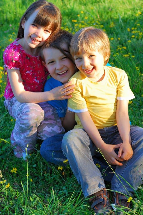 Glimlachende kinderen in een weide royalty-vrije stock foto