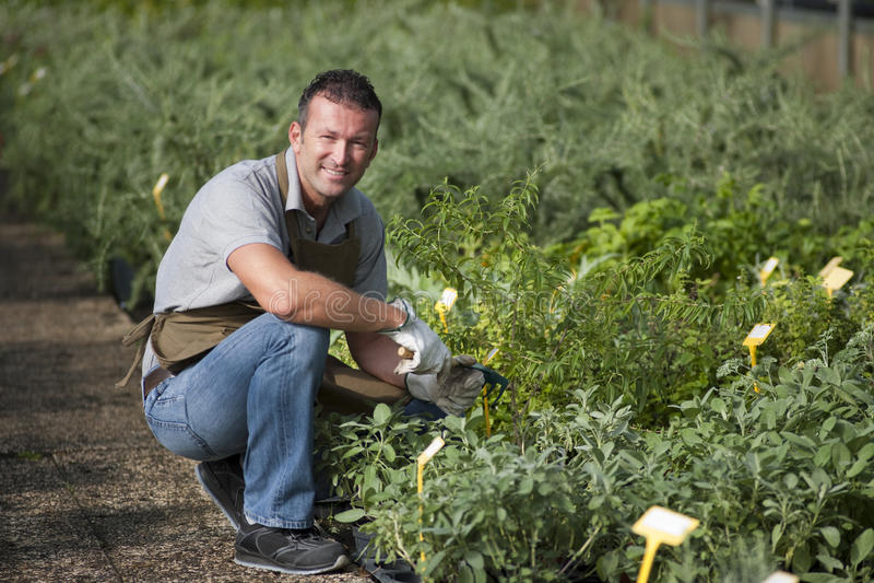 Glimlachende tuinman royalty-vrije stock foto