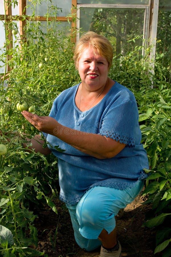 Glimlachende tuinman in zijn serre. stock foto's
