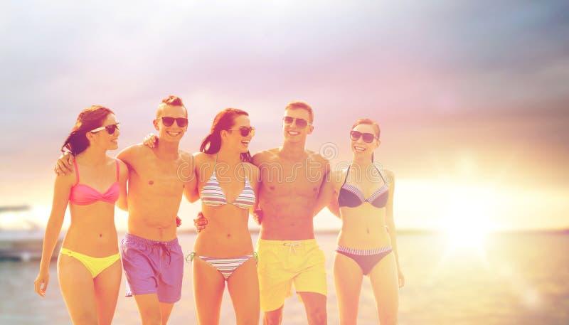 Glimlachende vrienden in zonnebril op de zomerstrand stock fotografie