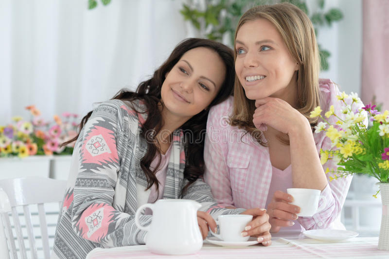 Glimlachende vrouwelijke vrienden die koffie drinken stock afbeelding