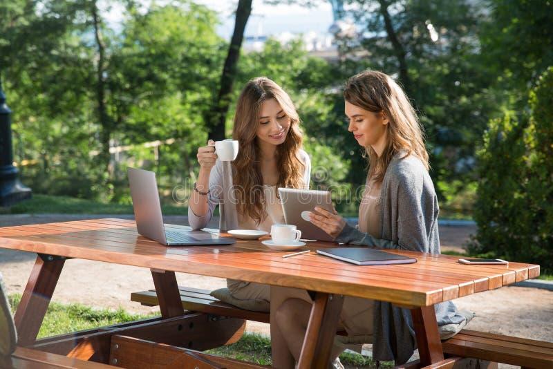 Glimlachende vrouwen die in openlucht in park het drinken koffie zitten die laptop met behulp van stock afbeeldingen