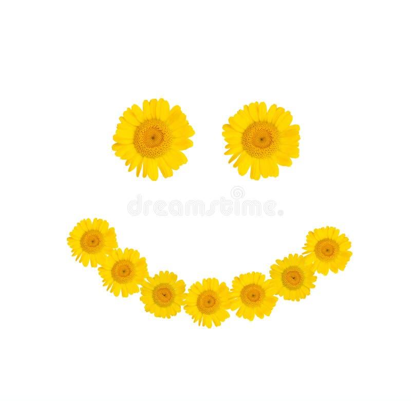 Glimlachsymbool van heldere gele bloemen op een wit geïsoleerde achtergrond De stemming van de zomer Close-up vector illustratie