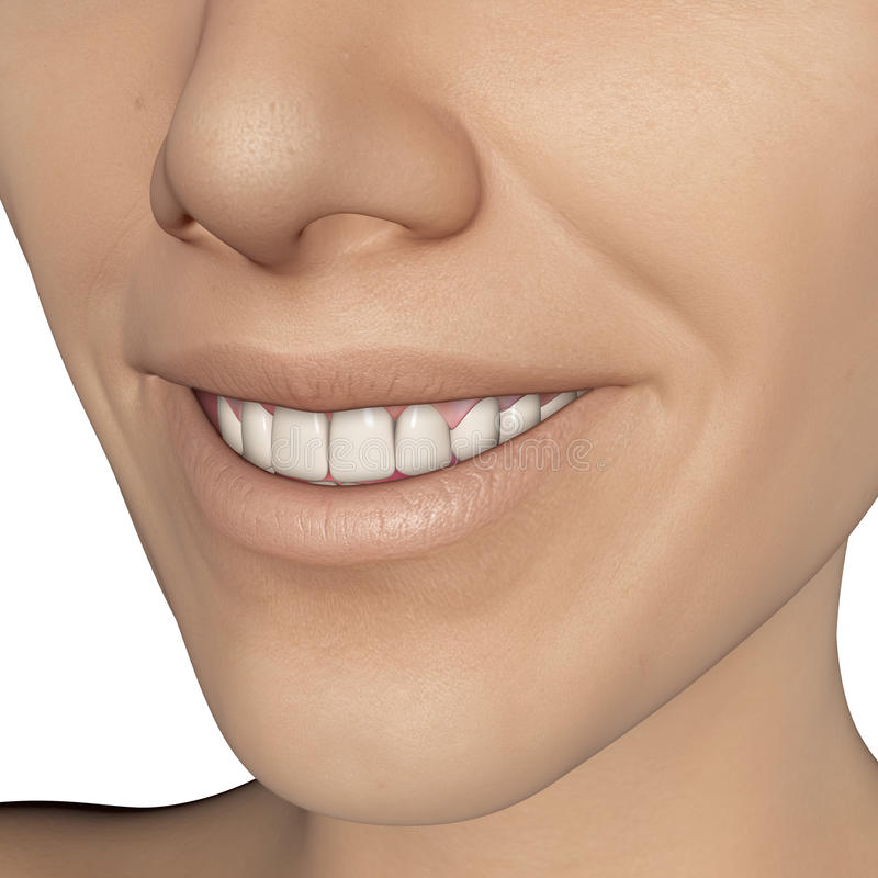Glimlachwijfje stock illustratie