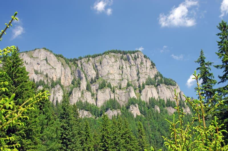 Glissière de montagne rocheuse photos libres de droits