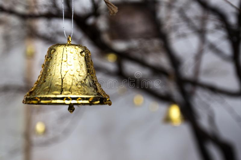 Glistening Golden Bell With Water Dew on it. Decorative christmas golden bell, placed outside and hung on top of tree, glisten because of the morning dew royalty free stock image
