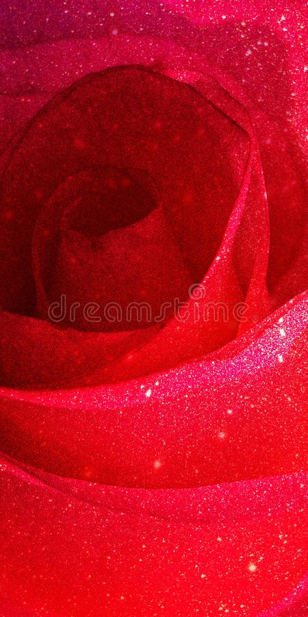 Glitter with rose shaded textured background. Shaded glitter texture abstract background stock image