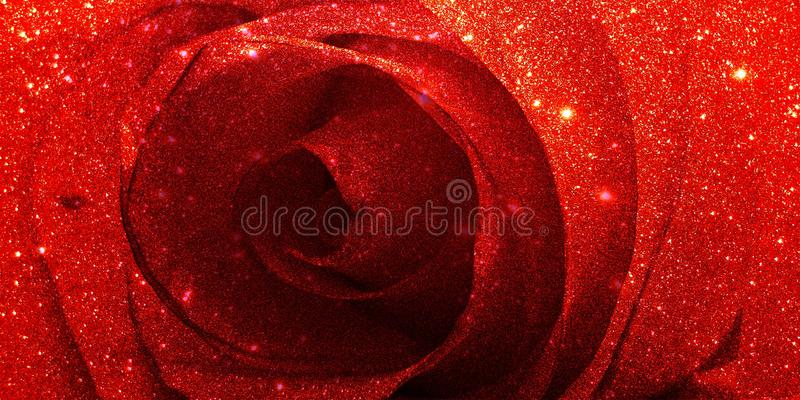 Glitter rose textured background royalty free stock photography