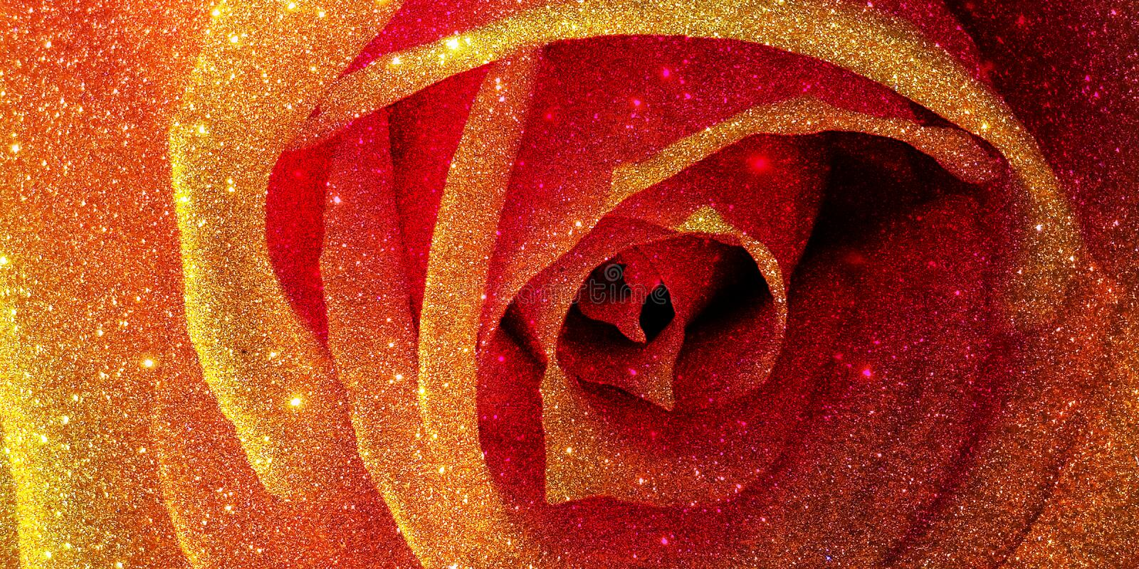 Glitter rose textured background royalty free stock photo