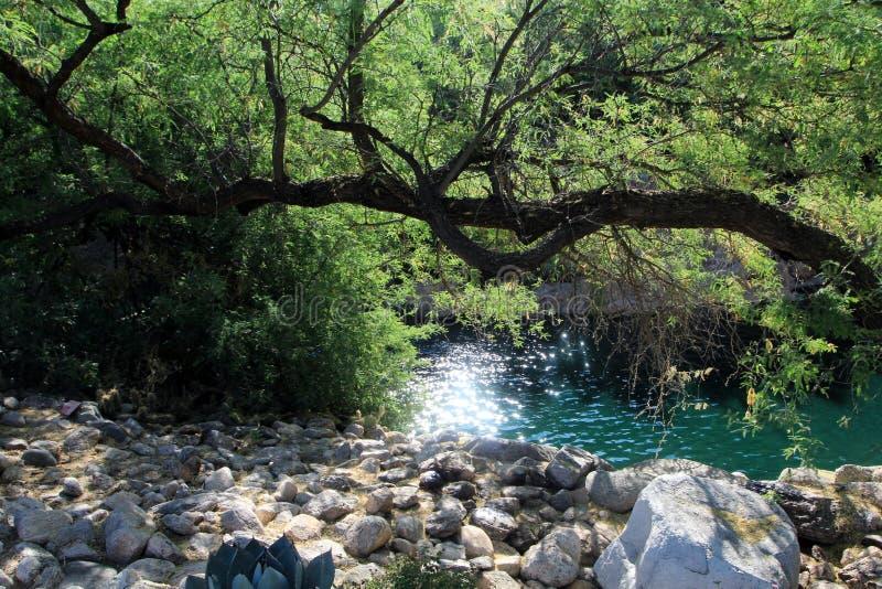 Glittering Desert Stream royalty free stock images