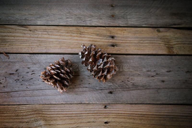 2 Glittery Pinecones стоковое фото