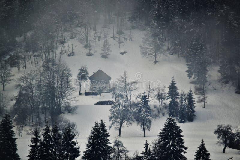 Gllomyatmosfeer na sneeuwval royalty-vrije stock foto