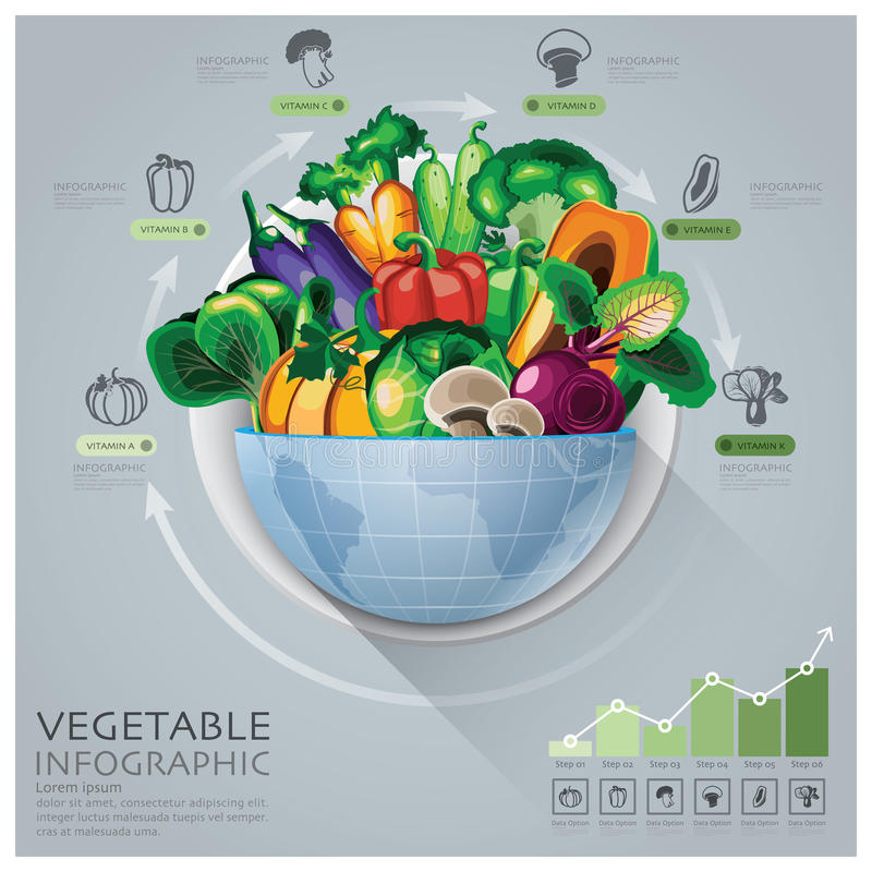 Global Medical And Health Infographic With Round Circle Vegetable Vitamin Diagram vector illustration
