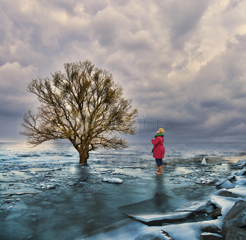 Global warming climate change. Young woman looking at a lone tree on a melting ice field against dramatic sky stock photography