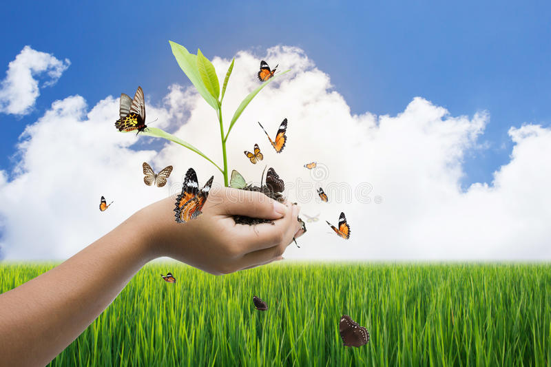 Global Warming Concept. Global Warming And Save The World Concept stock photo