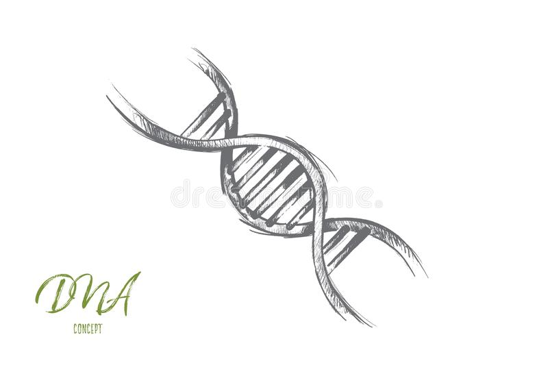 DNA concept. Hand drawn isolated vector. Global warming concept. Hand drawn illustration of DNA molecule structure. Genetic and chemistry research isolated stock illustration