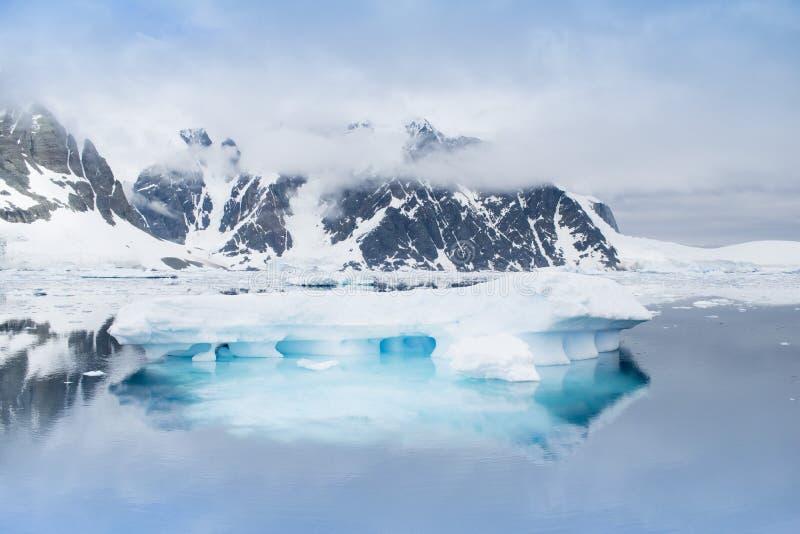 Global warming - Icebergs in Antarctic peninsula, Antarctica royalty free stock photo