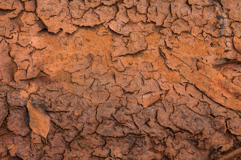 Global warming - parched earth. Parched Earth - the effect of Global Warming or climate change royalty free stock photo