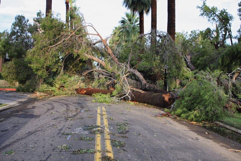 Globale Erwärmungs-Klimawandel-Hurricanes stockfotografie